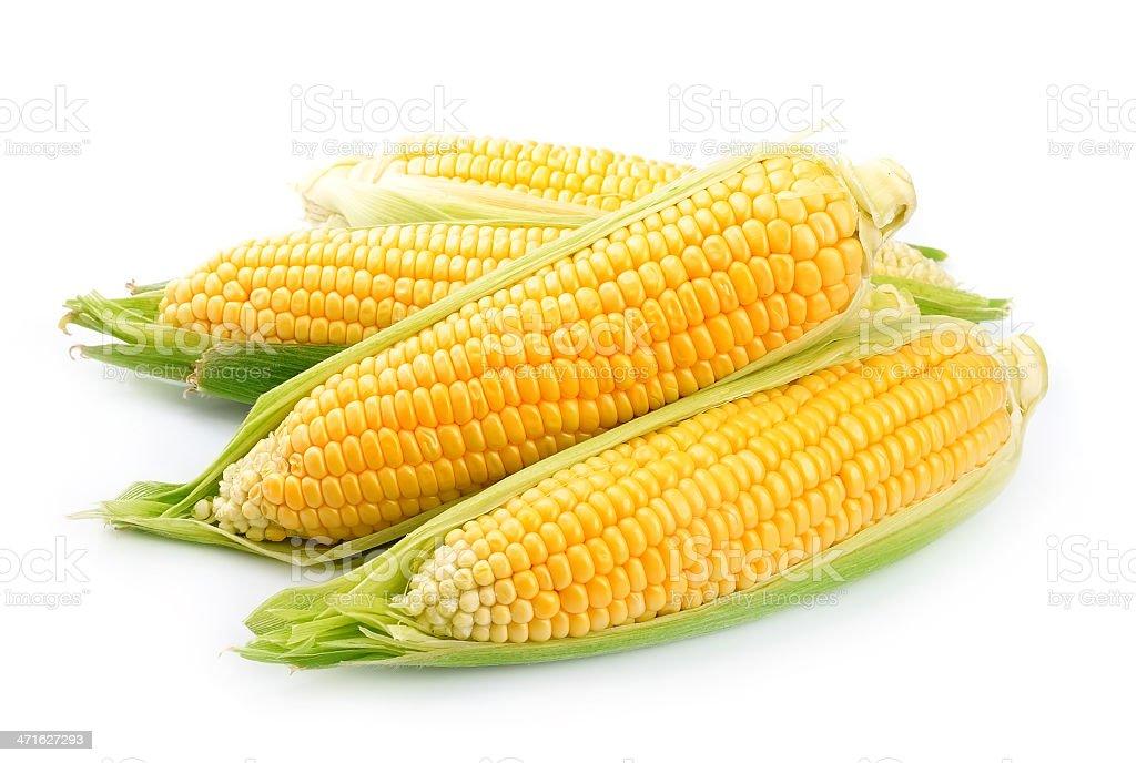 Bright yellow corn isolated on white stock photo