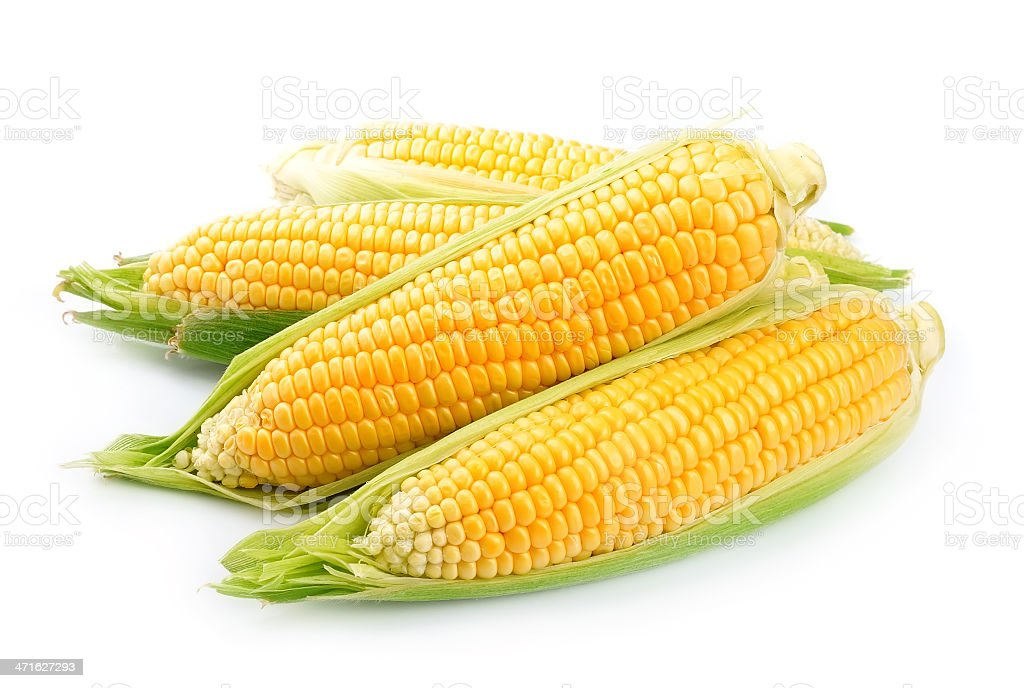 Bright yellow corn isolated on white stock photo