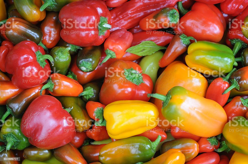 Brightly colored peppers at a farmer's market stock photo