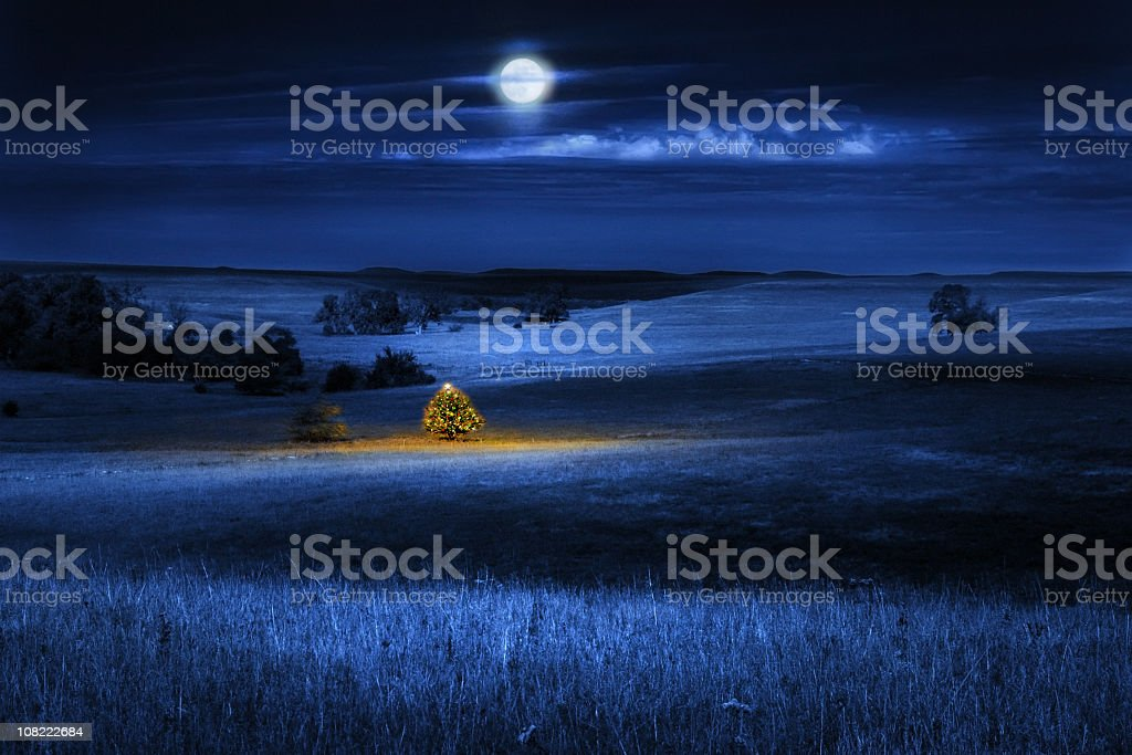 Brightly Lit Distant Christmas Tree  at Night Outdoors with Moon stock photo