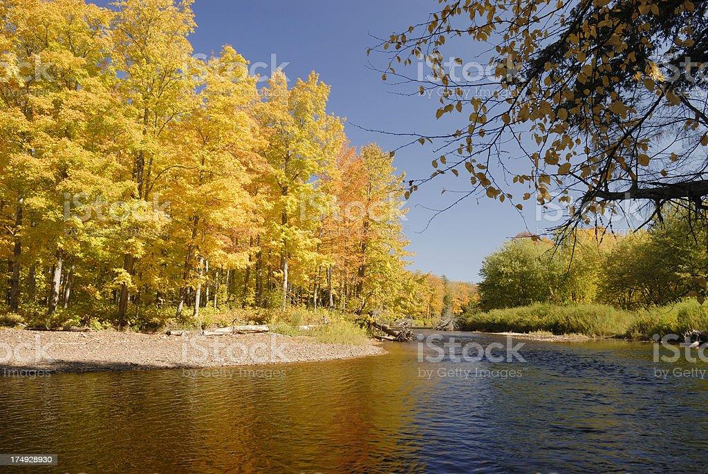Brillant fall colors on the Presque Isle river. stock photo