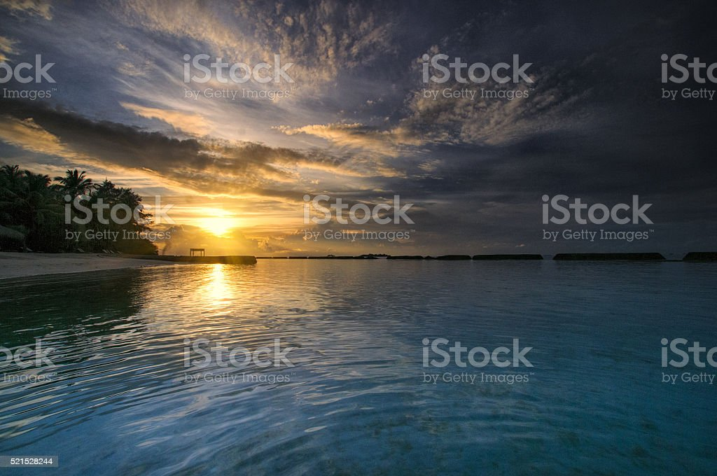 Brilliant blue ocean sunrset with palm trees stock photo