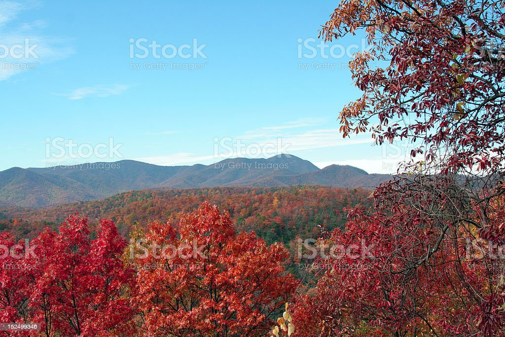 brilliant fall colors royalty-free stock photo