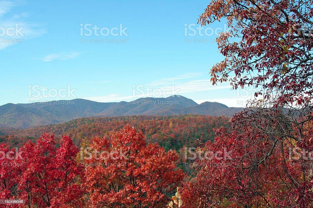 brilliant fall colors stock photo