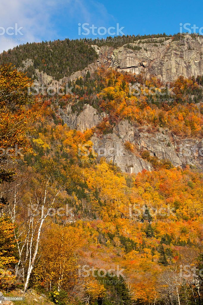 Brilliant fall foliage on Webster Cliffs in New Hampshire. stock photo