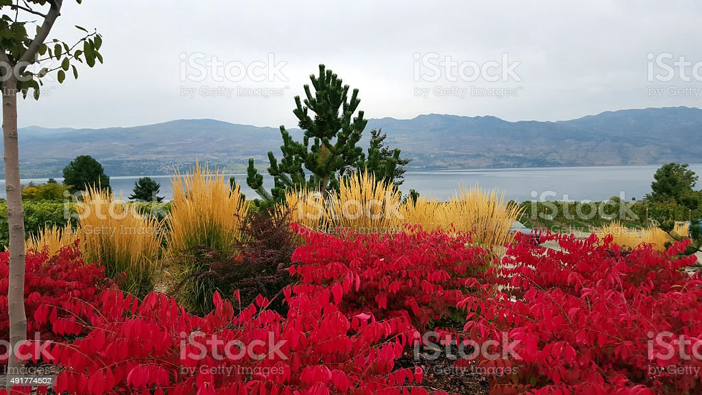 Brilliant Red And Yellow Fall Colors With Lake stock photo