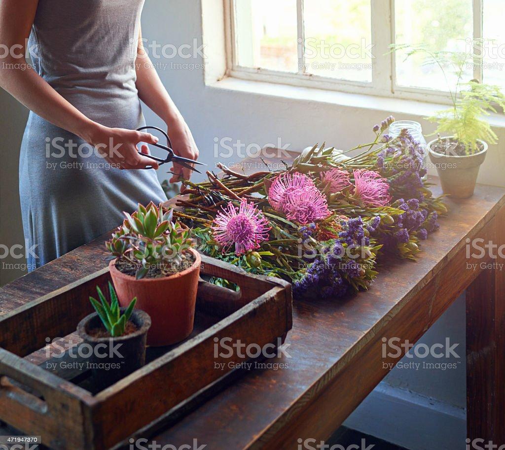 Bringing nature indoors stock photo