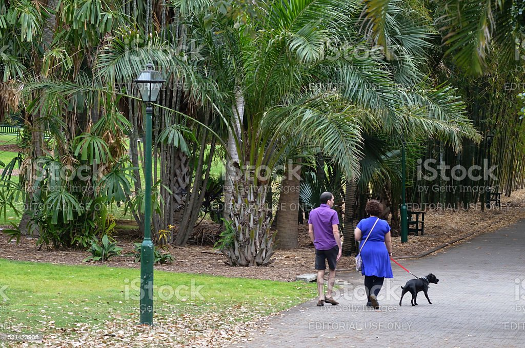 Brisbane City Botanic Gardens stock photo