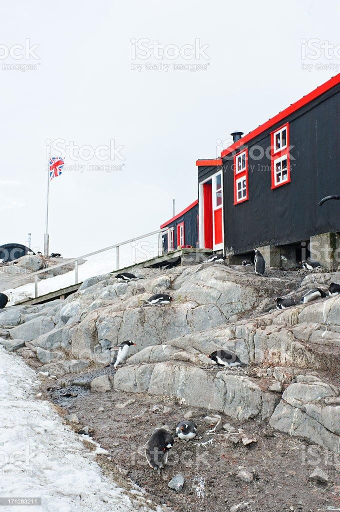 British base Port Lockroy stock photo