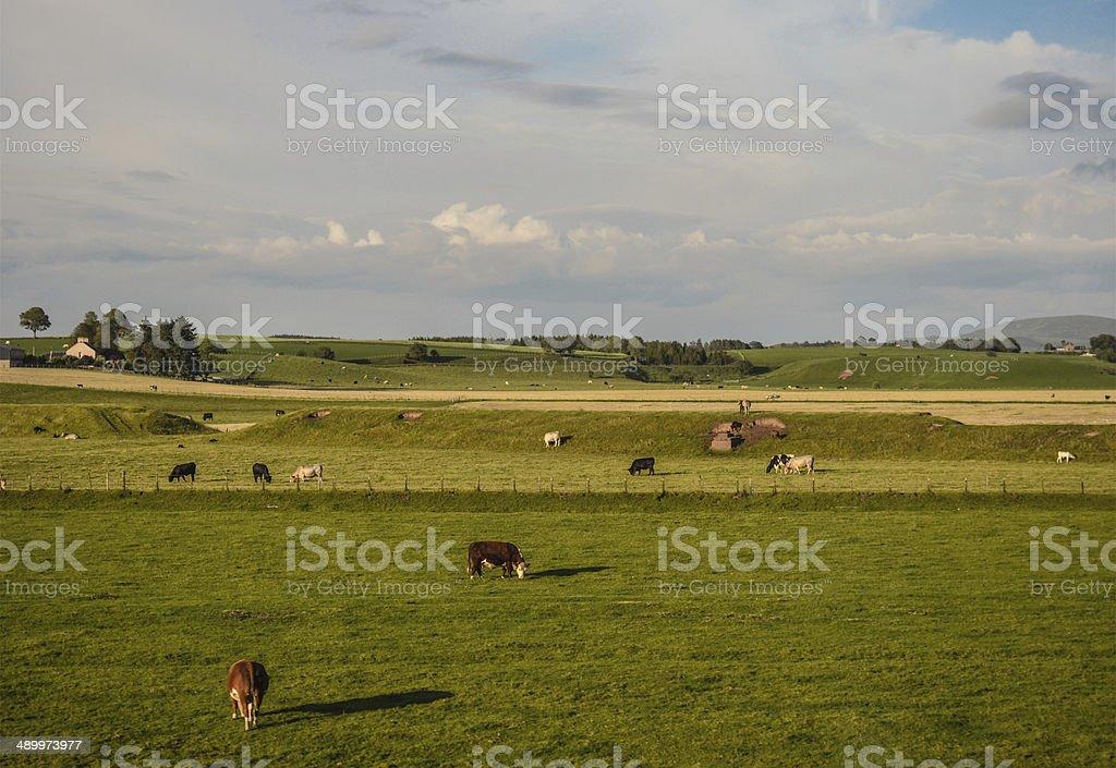 British countryside royalty-free stock photo