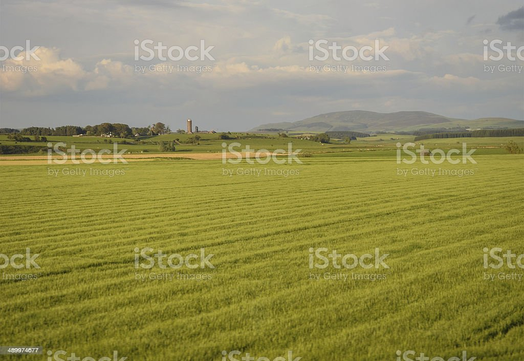 British countryside royalty-free stock photo