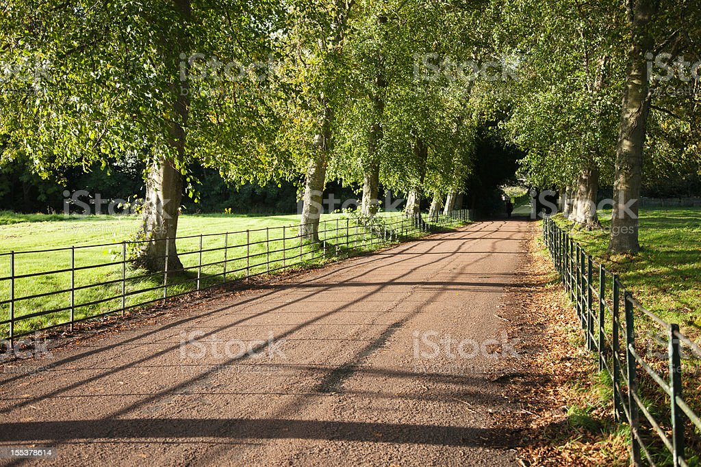British fenced country road royalty-free stock photo