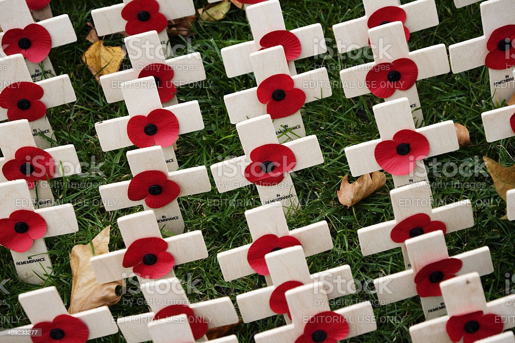 British Legion Field of Remembrance royalty-free stock photo