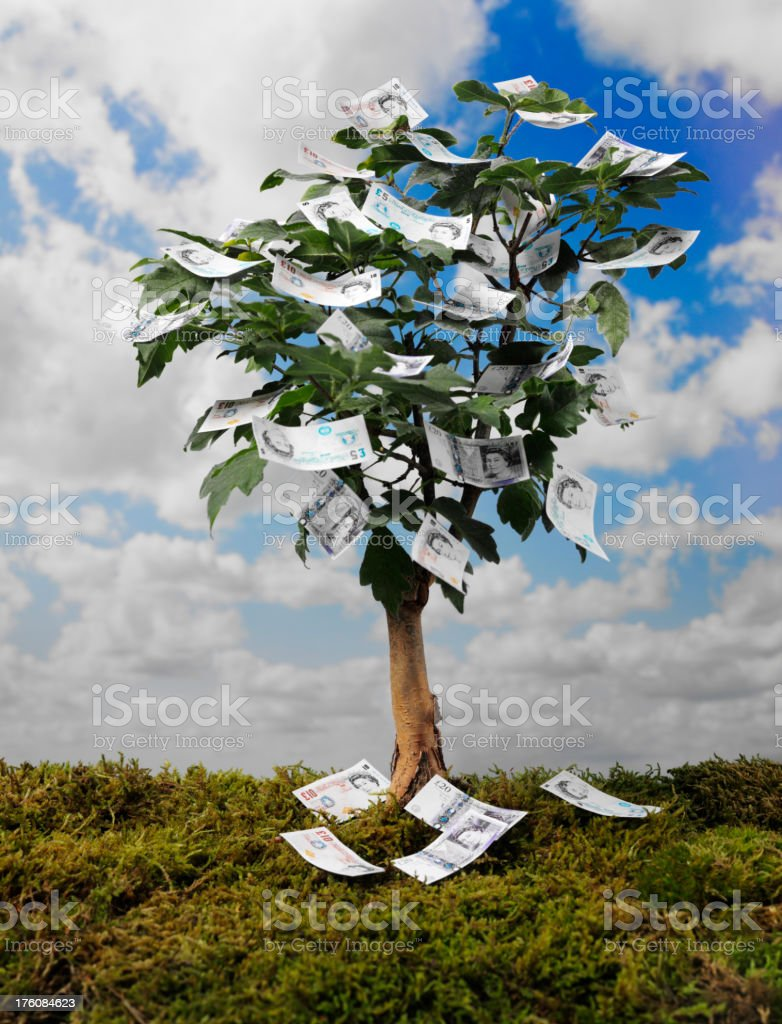 British Pound Notes on a Money Tree stock photo