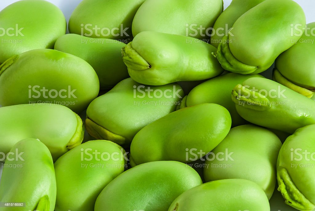 Broad bean green seeds lat. Visia faba. Fava bean stock photo