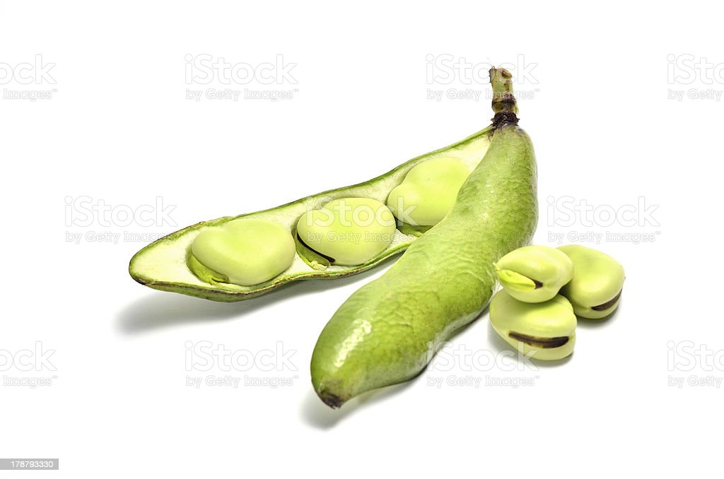 Broad Bean royalty-free stock photo