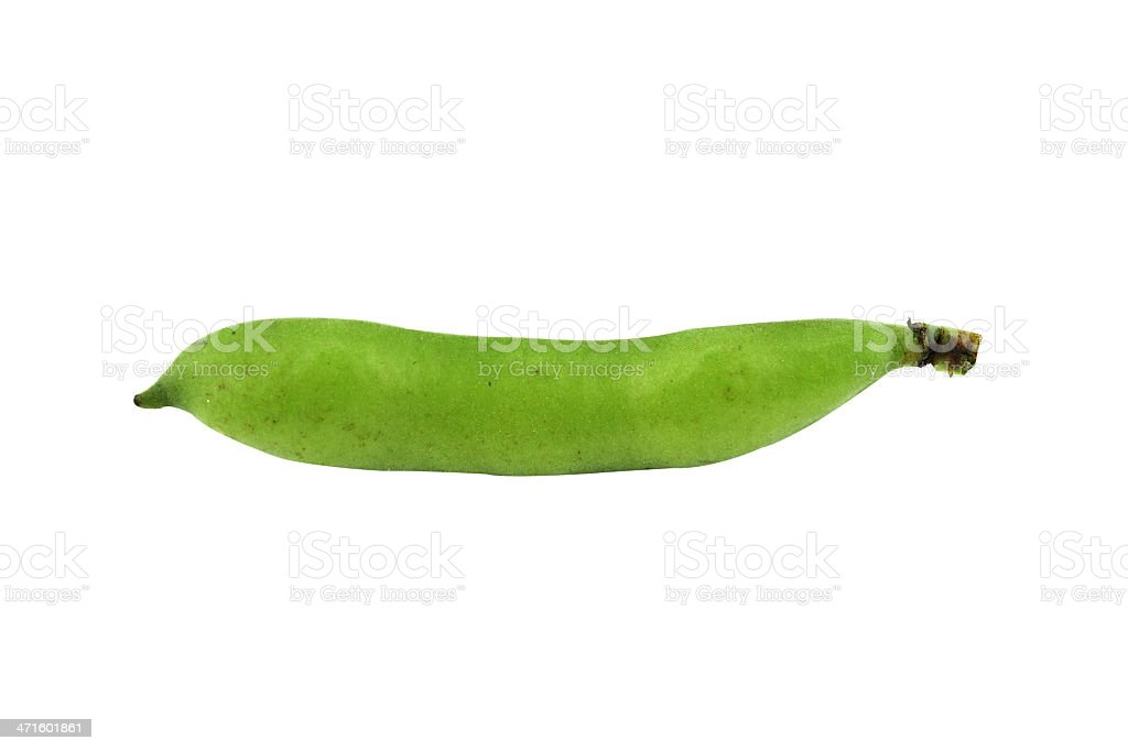 broad bean pods and beans royalty-free stock photo