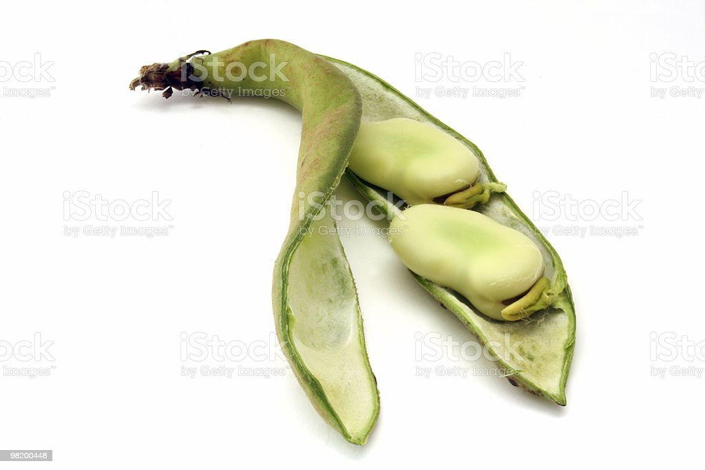 Broad beans and pod royalty-free stock photo