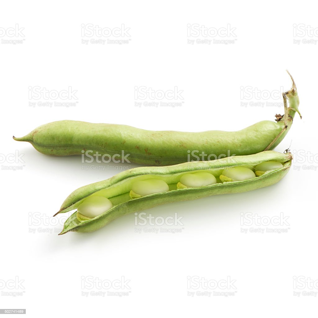 Broad beans on a white background stock photo