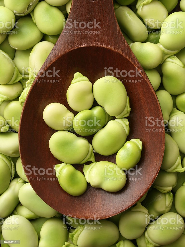Broad beans stock photo