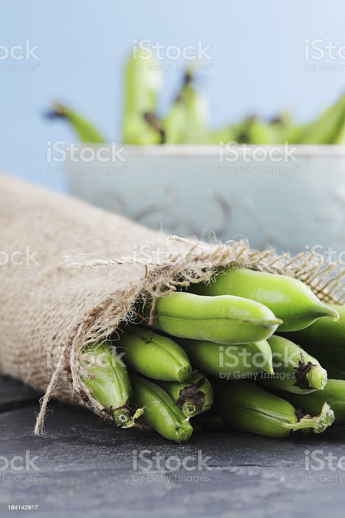 Broad or Fava Beans royalty-free stock photo