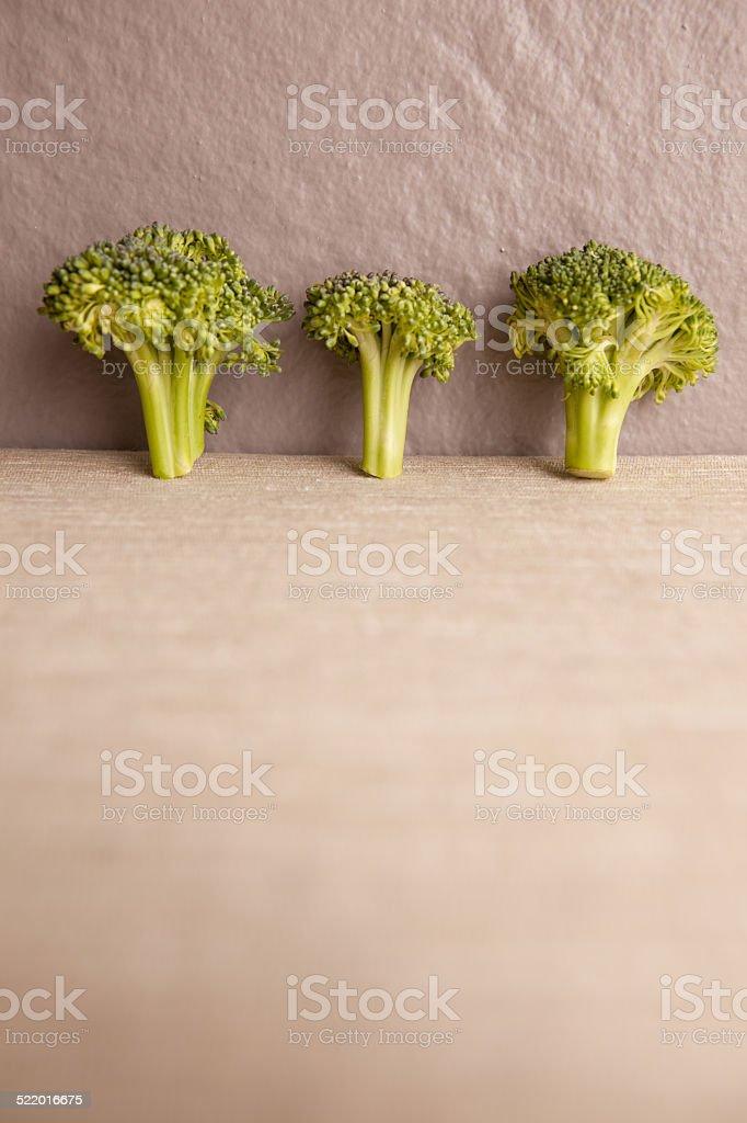 Broccoil stock photo