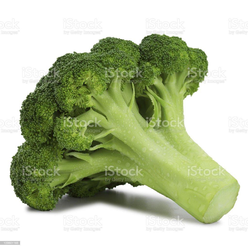 Broccoli Floret Isolated on White royalty-free stock photo