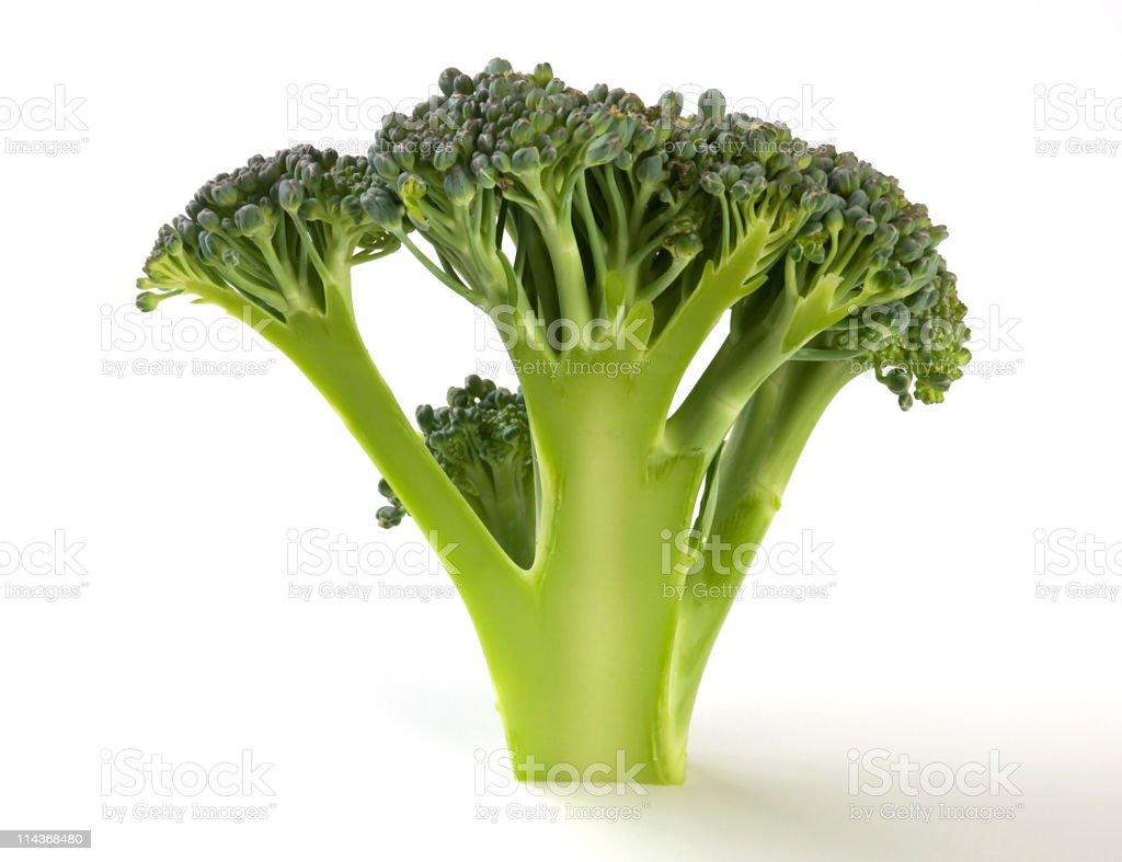 Broccoli floret split. stock photo