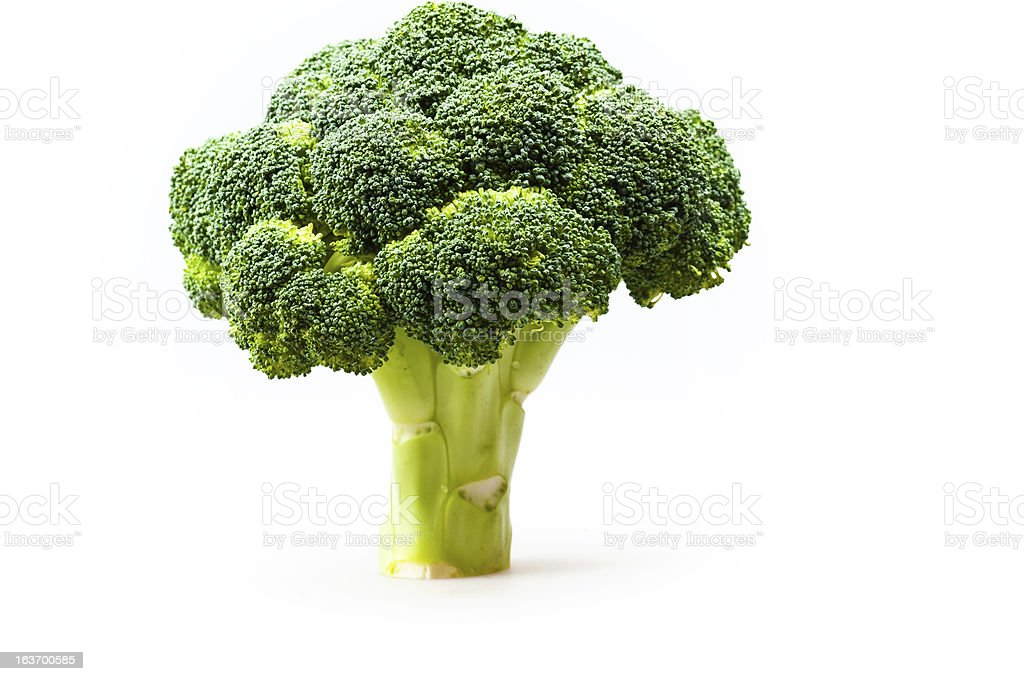 broccoli in a full length royalty-free stock photo
