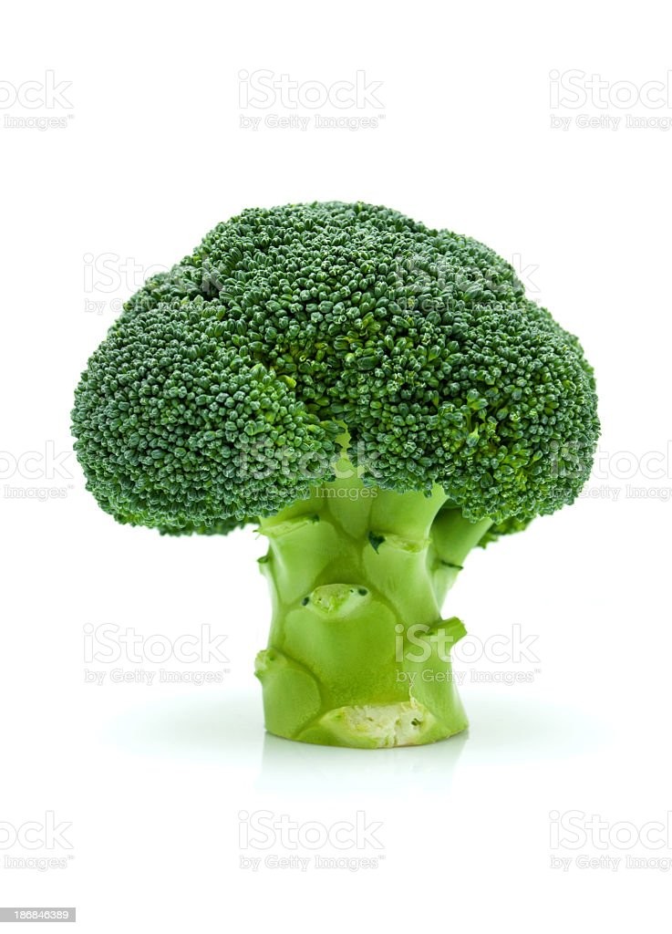 Broccoli isolated on white background royalty-free stock photo