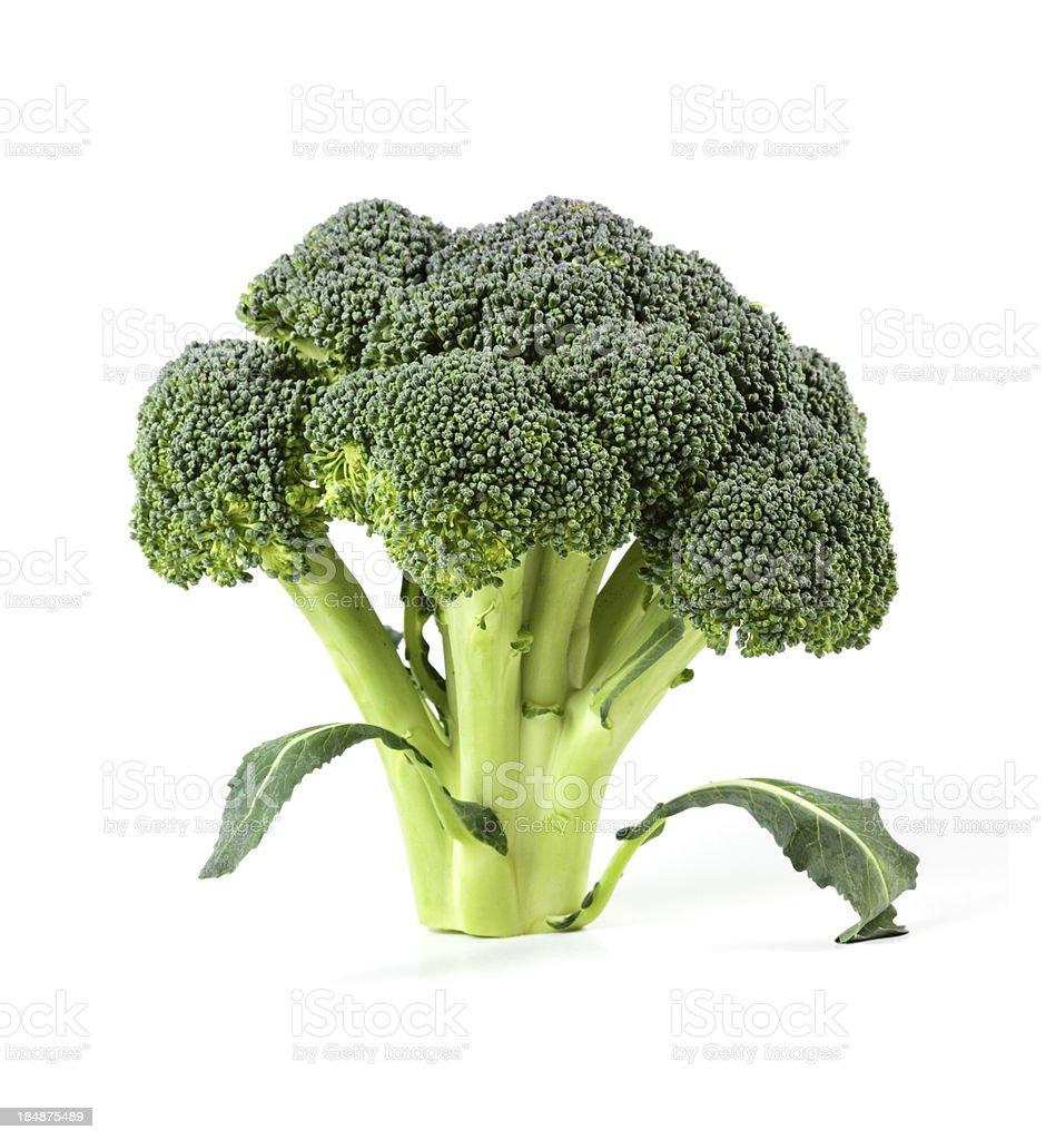 Broccoli isolated royalty-free stock photo