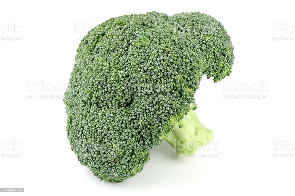 Broccoli On White Background royalty-free stock photo