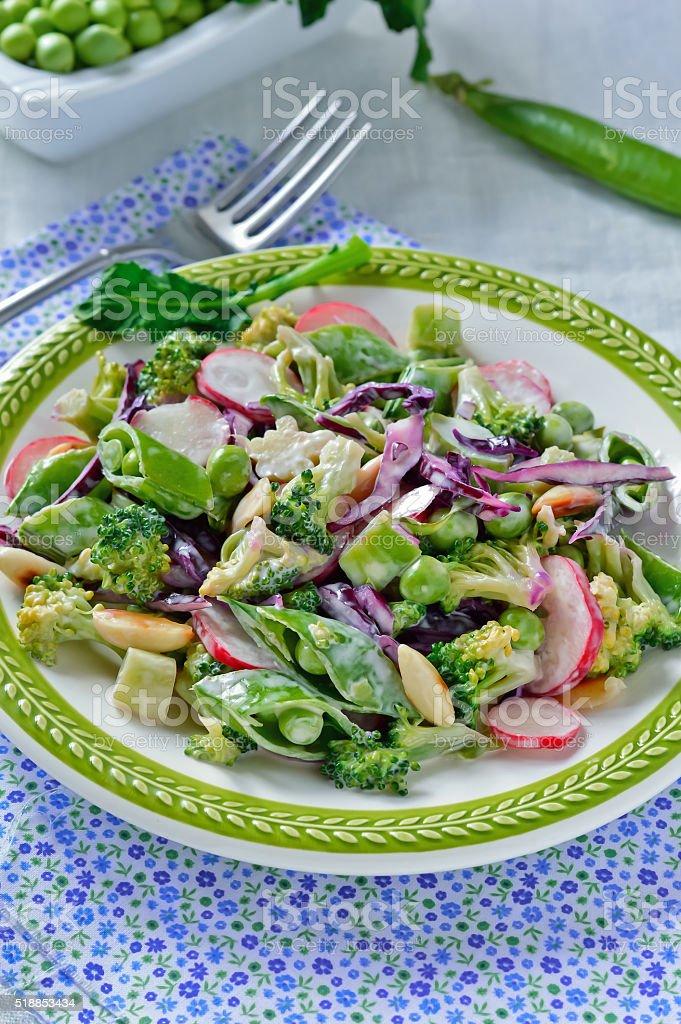 Broccoli Radish Salad stock photo