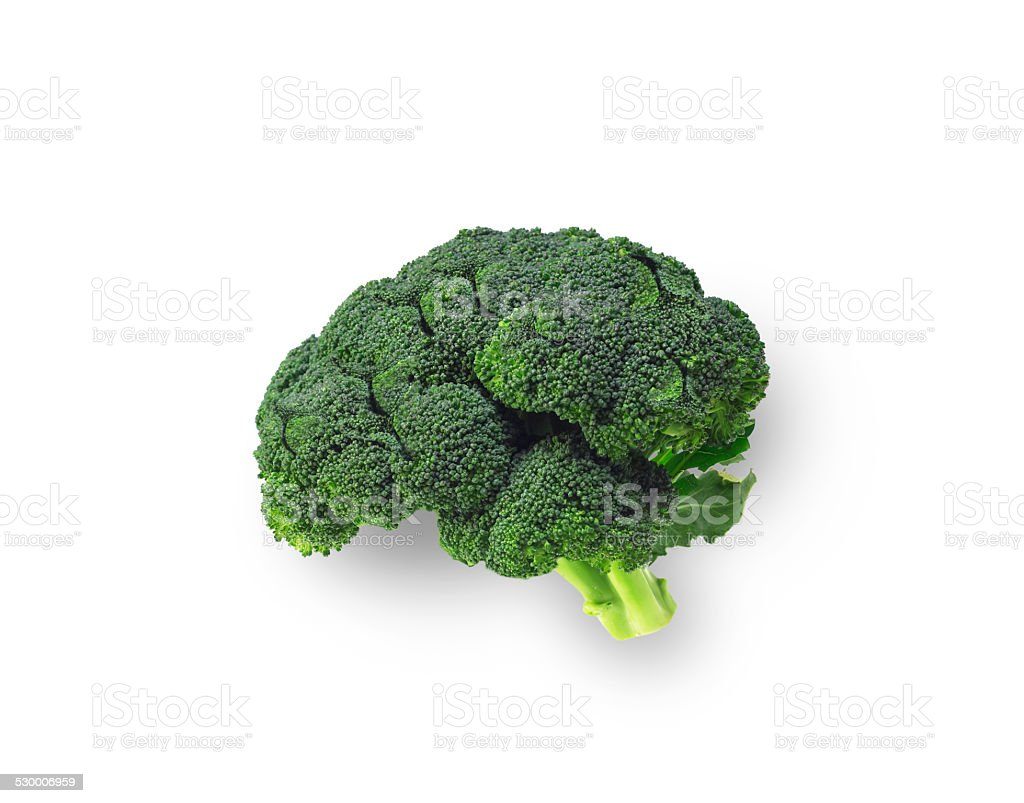 Broccolli that is shaped like brain on isolated background stock photo