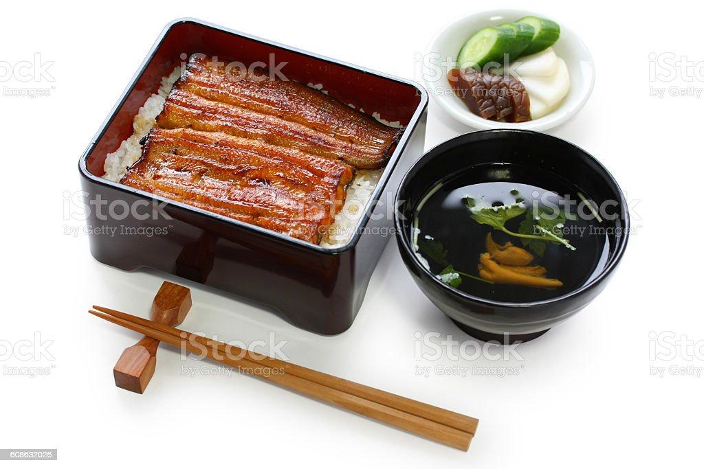 broiled eel on rice,unaju, japanese unagi cuisine stock photo