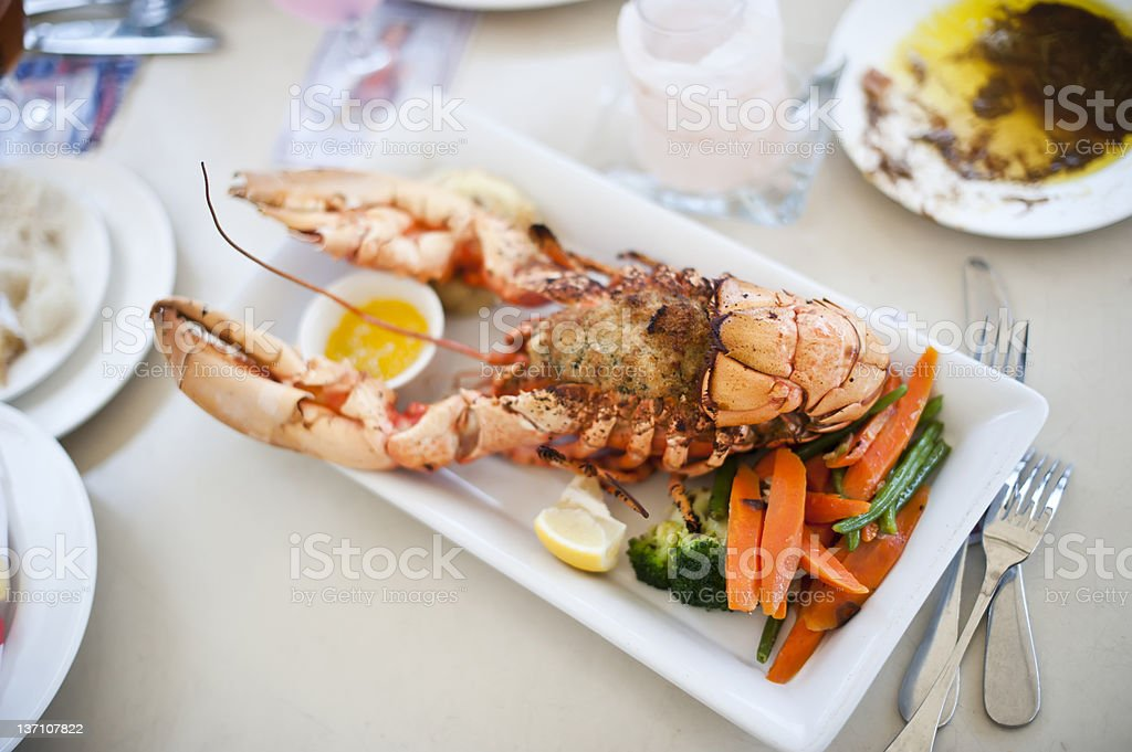 Broiled lobster stuffed with crabmeat stock photo