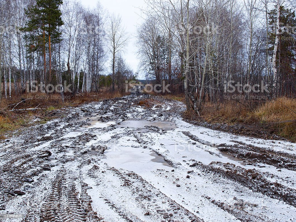 Broken autumn road in Russian forest stock photo