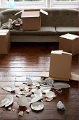 broken crockery next to cardboard box
