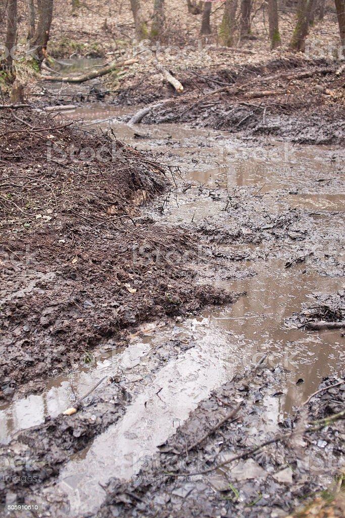 Broken dirt road in the woods. Offroad. stock photo
