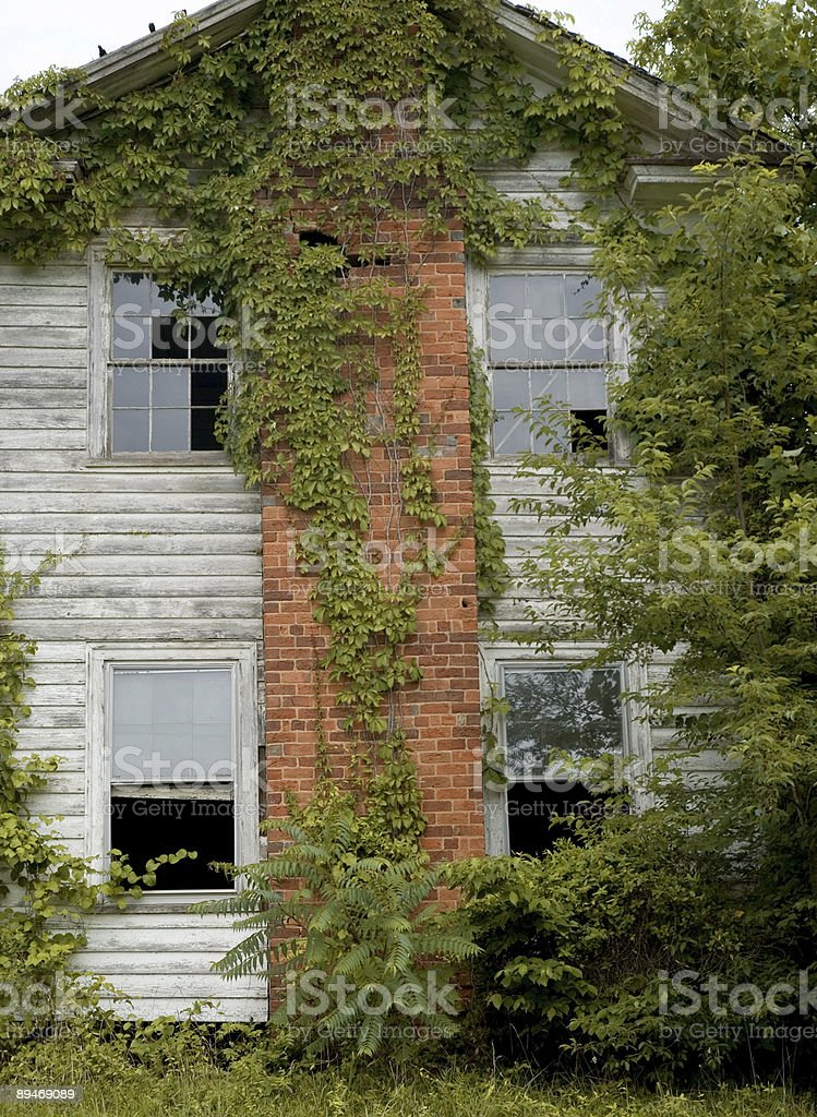 Broken Down Farm House Covered in Ivy royalty-free stock photo