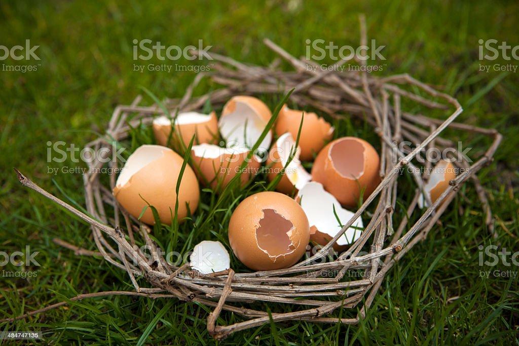Broken egg shells in a symbolic nest stock photo