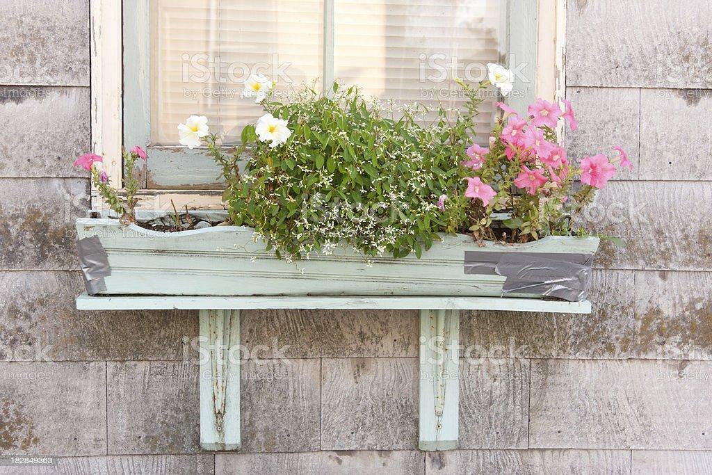Broken Flower Box royalty-free stock photo