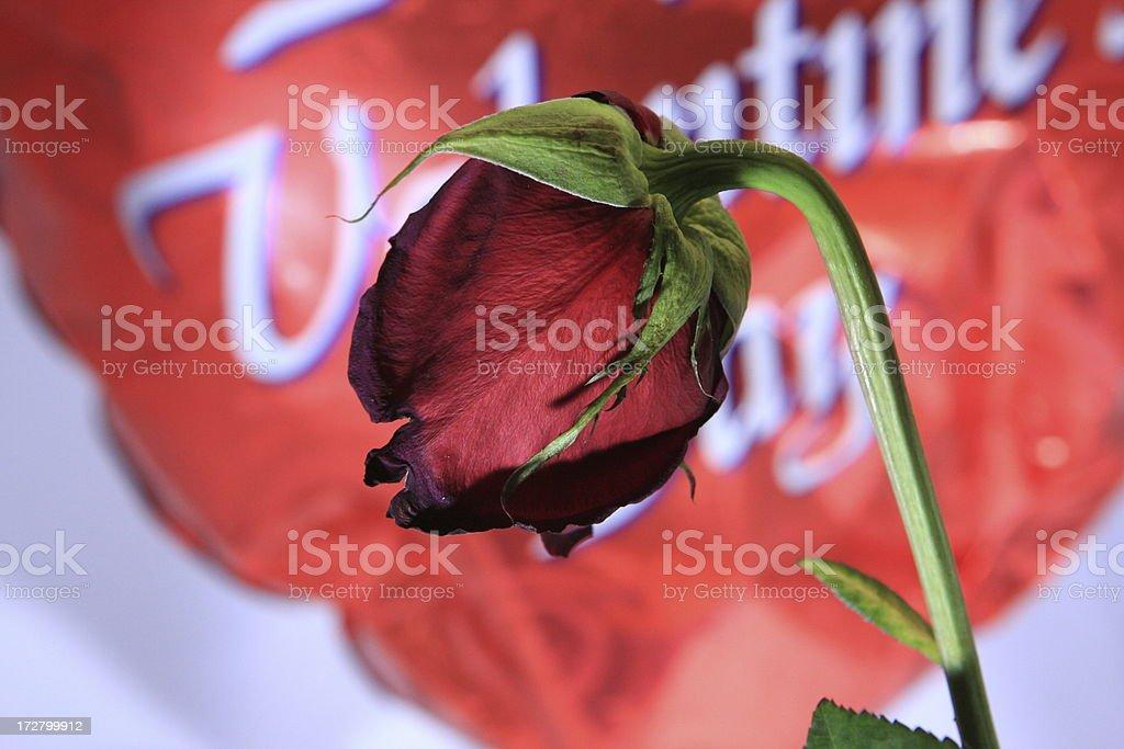 Broken hearts royalty-free stock photo