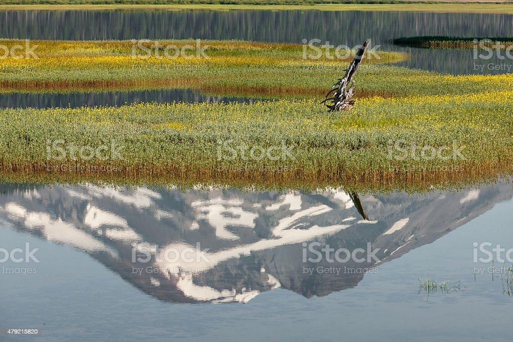 Broken Top Reflection stock photo