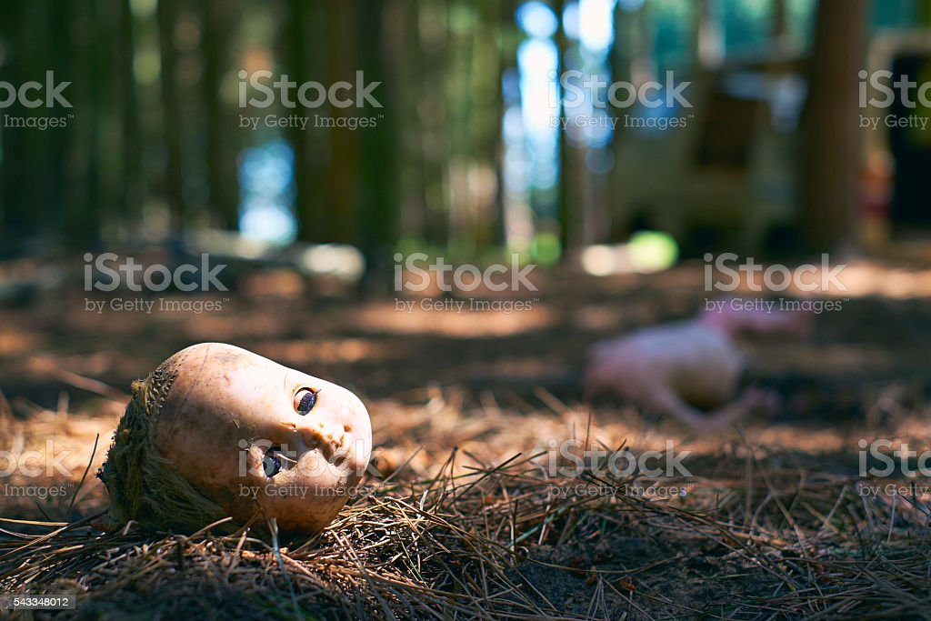 Broken Toy Doll On The Forest Floor stock photo
