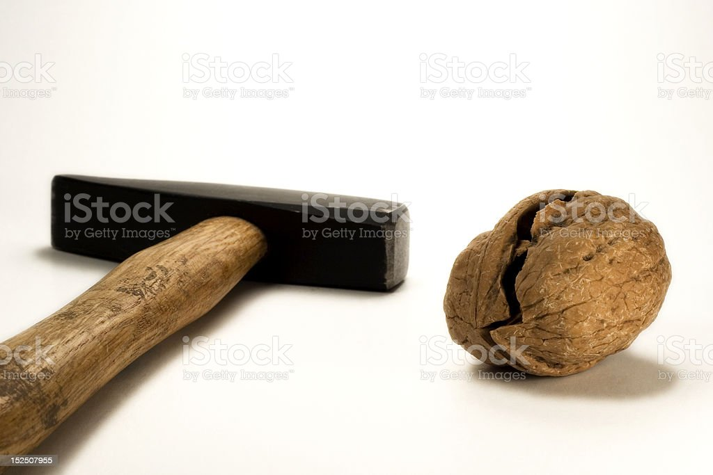 broken walnut and hammer royalty-free stock photo