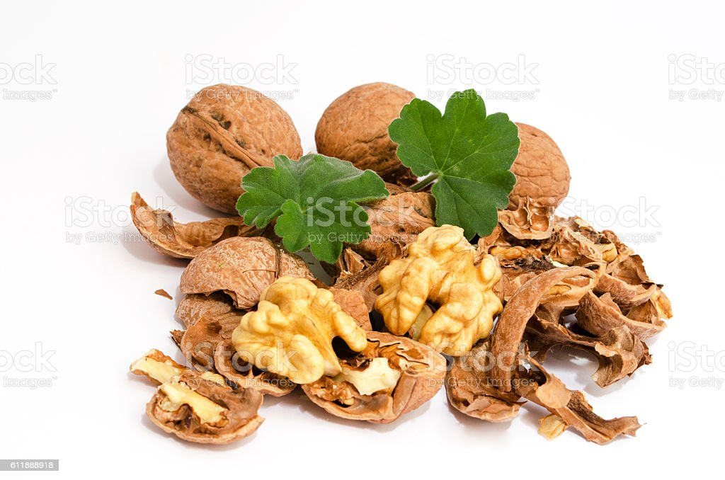 Broken Walnuts isolated royalty-free stock photo