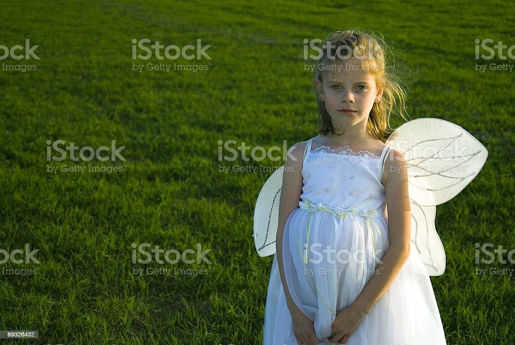 Broken Wings Lizenzfreies stock-foto