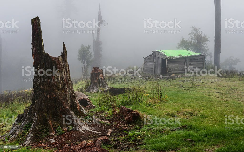 Brokpa wooden hut cloaked in mist, Dirang, Arunachal Pradesh, India. stock photo