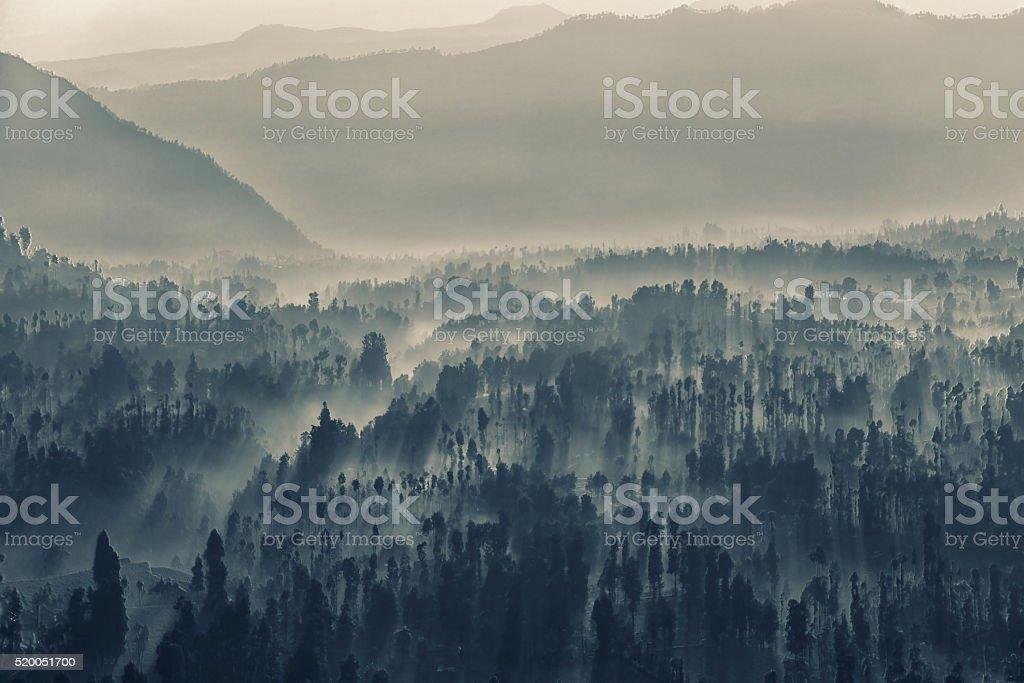 Bromo caldera into the fog stock photo
